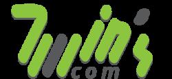 Web SEO agency : twins com